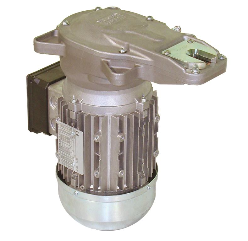 Testa ravvivatore elettrico 550 watt